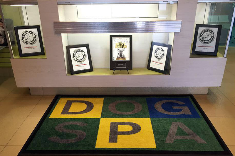 Awards, Dog Spa mat